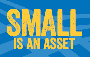 small is an asset
