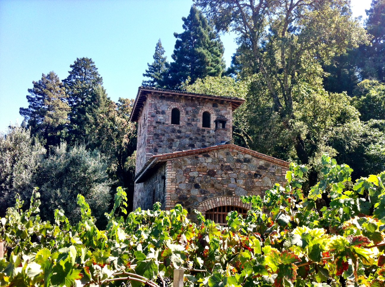 Del Dotto Estate Winery2